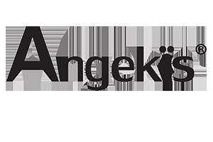 angekis-300